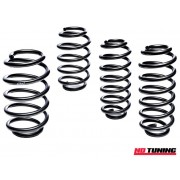 Ford Fiesta Mk6 ST150 Eibach Pro Kit Lowering Springs
